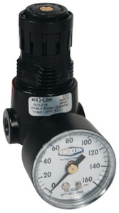 Dixon Wilkerson 1/8 in. R03 Miniature Regulator With Gauge