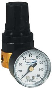 Dixon Wilkerson 1/8 in. RB3 Miniature Water Regulator With Gauge