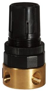 Dixon Wilkerson 1/4 in. RB3 Miniature Water Regulator Without Gauge