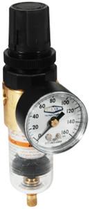 Dixon Wilkerson 1/4 in. BB3 Miniature Filter/Regulator with Transparent Bowl & Auto Drain