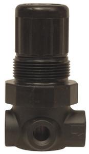 Dixon Series 1 R07 1/8 in. Mini Regulator Without Gauge