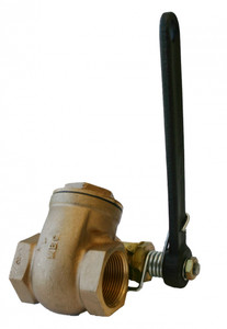 Morrison Bros. 238 Series 2 in. Quick Opening Gate Valves w/ Spring