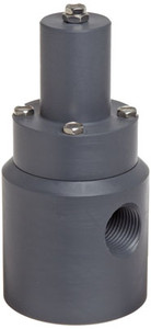 Plast-O-Matic Series RVD 1/4 in. Poly Angle Pattern Relief Valves w/ Viton Seals