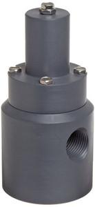 Plast-O-Matic Series RVD 1/2 in. PVC Angle Pattern Relief Valves w/ Viton Seals