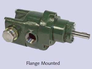 Roper Series A 18AM005 Petroleum Transfer Gear Pump - 3/8 in. Ports