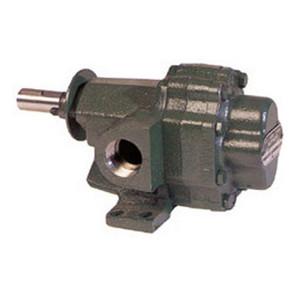 Roper Series A 2AM08 Petroleum Transfer Gear Pump - 1 1/4 in. Ports