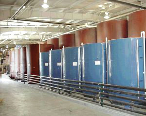 Single Wall Vertical Tanks With Double Bottoms