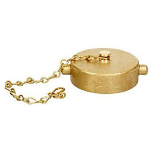 Dixon 2 1/2 in. Cast Brass Pin Lug Cap & Chain NST(NH)