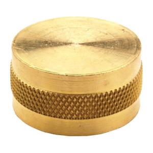 Dixon 3/4 in. Brass Garden Hose Cap