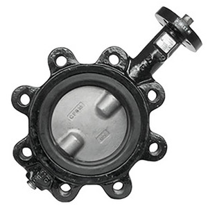 Jomar Valve 600 Series Epoxy-Coated Ductile Iron w/SS Disc Butterfly Valves, Buna-N Seals, Lug Style, Gear Handle