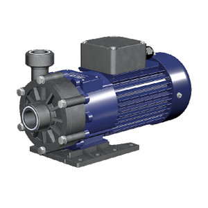 Renner RM-TS 2 Type 5/50 Run Dry Pump, 0.125 kW, 1 Phase 120