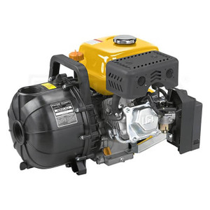 Pacer Pump S Series 2 in. Econo-AG Water Pump w/6HP LCT MAXX Series OHV Engine, 160 GPM
