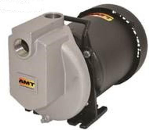 AMT 429598 1 in. Self-Priming Stainless Steel Centrifugal Pump