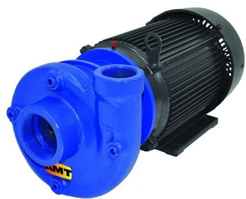 AMT 315295 Heavy Duty Cast Iron Straight Centrifugal Pump