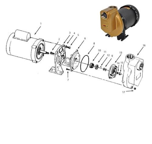 "AMT Shaft Seal (Teflon) for 389 Series 1 1/2"" Chemical Pumps - Shaft Seal - Teflon - 10 & 11"