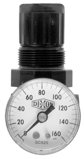 Dixon Series 1 R07 1/8 in. Mini Regulator With Gauge