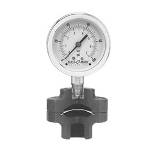 Plast-O-Matic Series GGS 1/4 in. x 1/2 in. NPT PVC Gauge Guard with 2 1/2 in. Face SS Pressure Gauge - 0-60 PSI