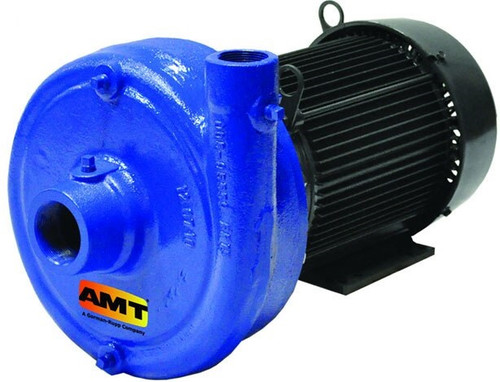AMT/Gorman Rupp 2 in. x 1 1/2 in. 1750 RPM Cast Iron Straight Centrifugal Pump