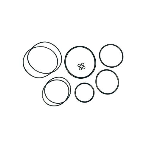SVI Inc. Air Motor Seal Repair Kit for Balcrank Lion & Tiger Series Pumps