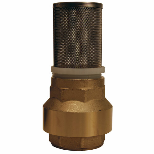 Dixon Strainer with Spring Loaded Check Valves