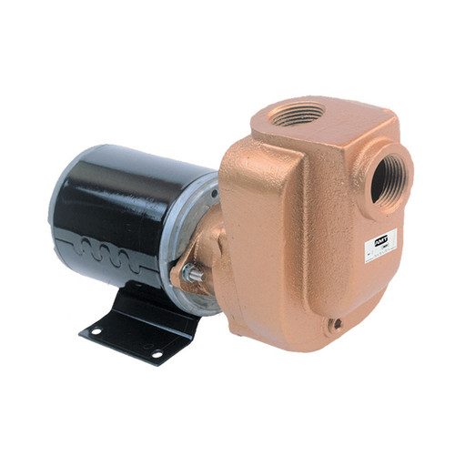 AMT 4851-97 3/4 in. Bronze Self Priming Centrifugal Pump