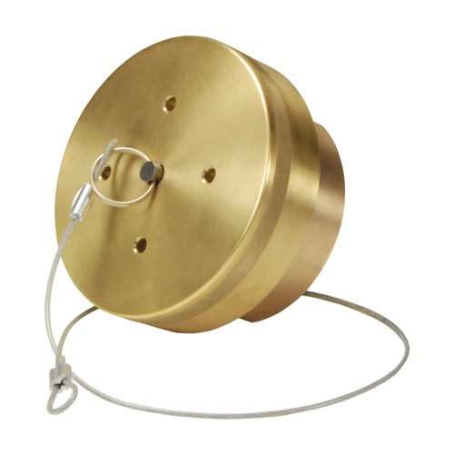 Dixon Cryogenic Brass LNG Coupling w/ FNPT Thread/Cap & Retaining Cable