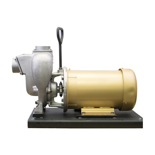 Banjo 2 in. Stainless Steel Centrifugal Pump w/ Three Phase 5 HP 230V Electric Motor