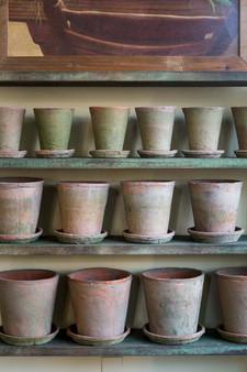 Rose Pot w Saucer