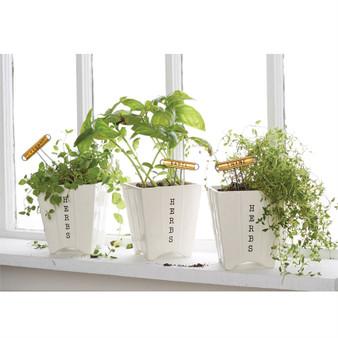 Basil Herb Planter