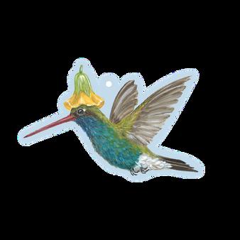 Hummingbird Gift Tag - Pack of 12