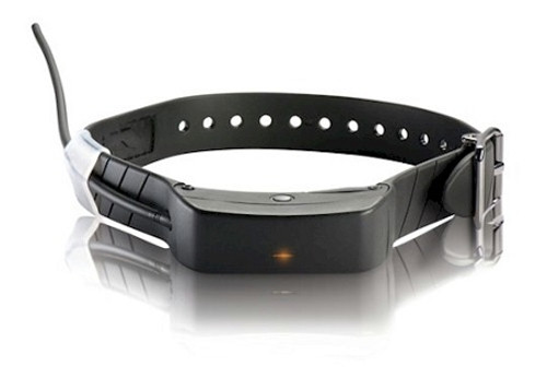 SportDog TEK Series GPS Collar (TEK-L)