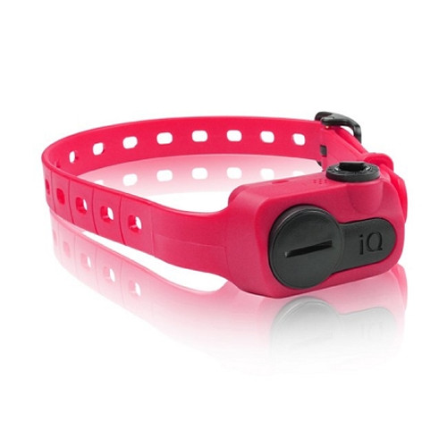 Dogtra IQ-BARK-PNK iQ No Bark Collar Pink