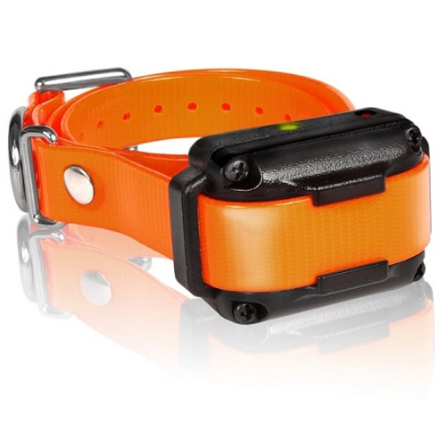 Dogtra IQ-PLUS-RX IQ Plus Additional Receiver Orange Strap