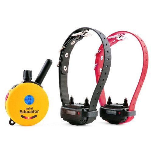 E-Collar 2 Dog Mini Educator E-Collar 1/2 Mile Remote Dog Trainer