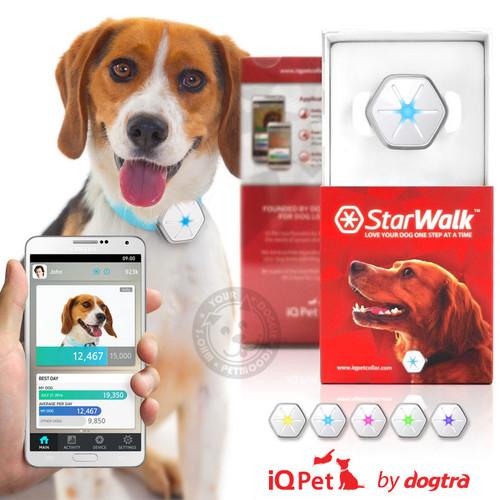 Dogtra StarWalk (Black) iQ Pet Activity Tracker