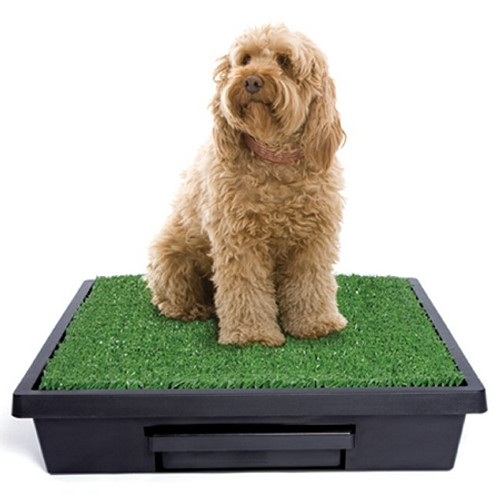 Petsafe PWM00-14499 Pet Loo Potty Training System - Large