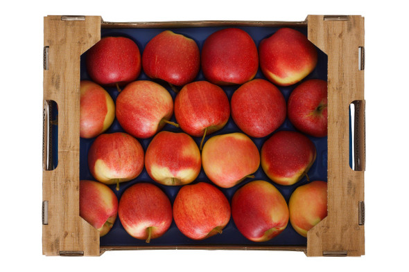 Apple Fuji Organic Crate 15Kg (Forest Orchard)
