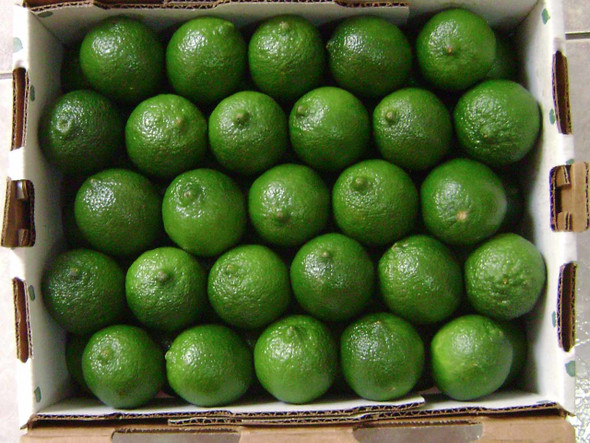 Lime Organic Tray 5kg (Stannery Hills)