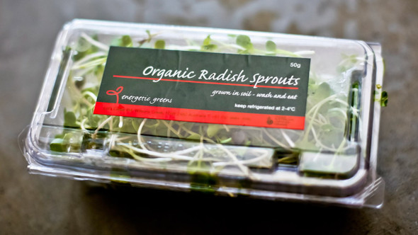 Radish Sprouts Organic Punnet 50g Limited (Energetic)