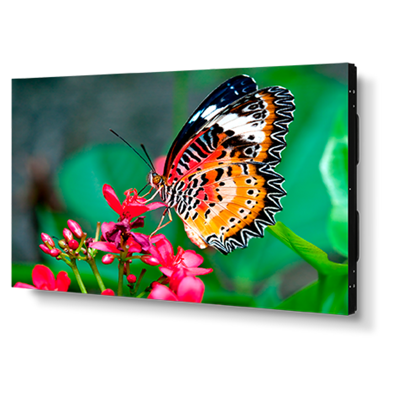 """NEC UN492S 49"""" Full HD Ultra Narrow Bezel 24/7 Video Wall Display"""