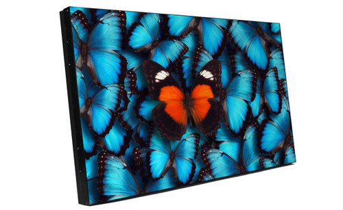 "Barco Overview 55"" Full HD High Performance Extreme Narrow Bezel 24/7 Video Wall LCD Display"