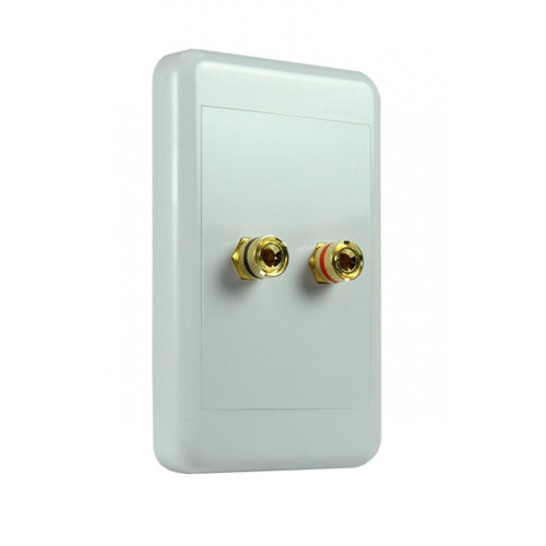 Origin NSP2024 2-Way 4mm Pins Speaker Wallplate