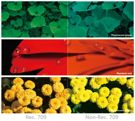 Cinematic color modeled on the HDTV standard, Rec. 709