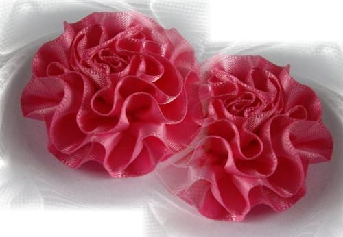 50mm Carnations