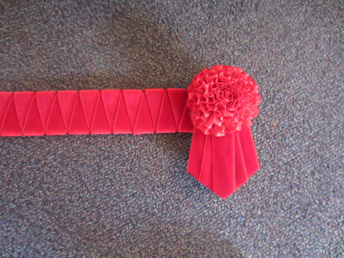 Colour Block Browband Red