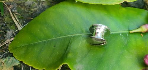 10mm Silver Concho