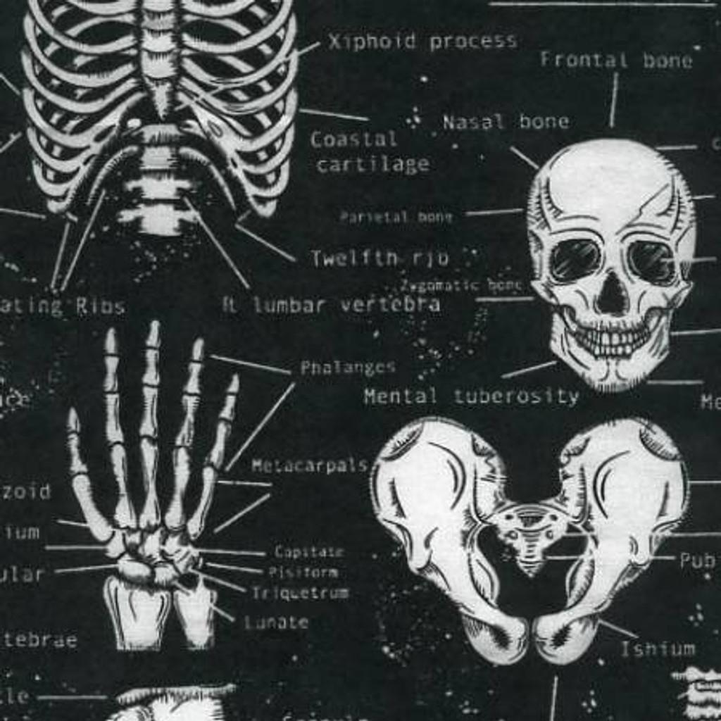 Glow In The Dark Skeleton - Timeless Treasures Cotton (CG9810-BLACK)