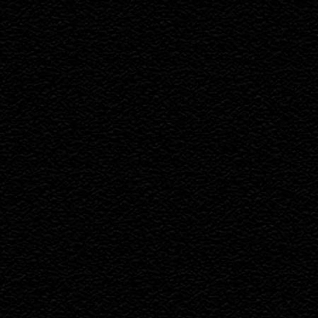 Black Winter Fleece - 1/2 yard (WFS9000)