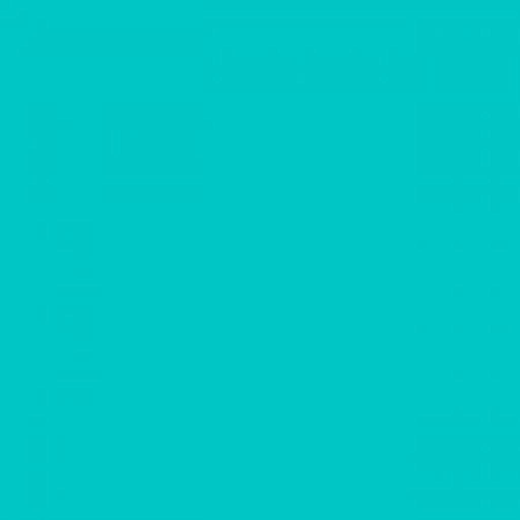 Turquoise Winter Fleece - 1/2 yard (WFS6800)