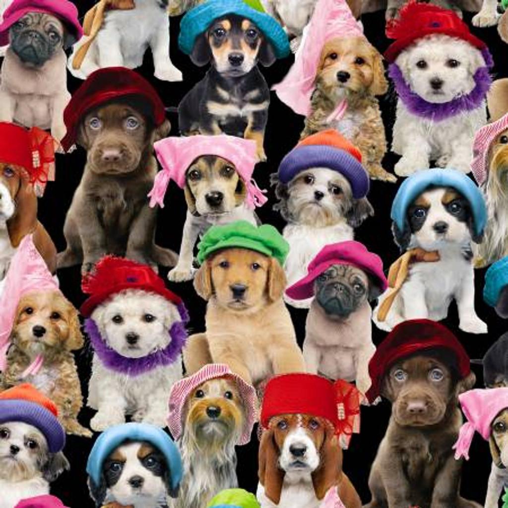 Puppies In Hats - Elizabeth's Studio Cotton - 1/2 yard (3801-blk)